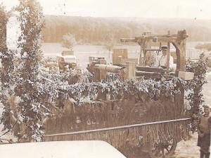 Der letzte Leinweber in Heftrich im Jahr 1934