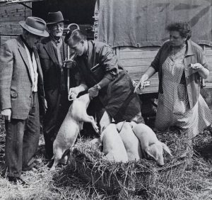 Markt in den 60ern