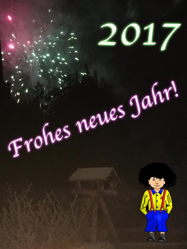 fnj2017